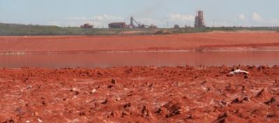 20120217225405-lodos-rojos-foto-ciencia-guayana.jpg